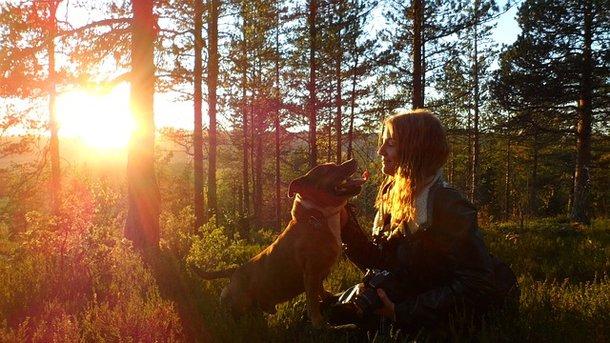 Собаки можуть розмовляти з людьми – дослідження
