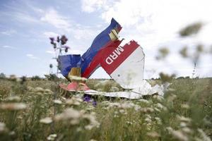 "<p style=""text-align: justify;"">Уламки MH17, збитого над Донбасом, фото AFP</p>"