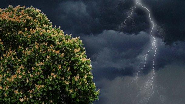 Картинки по запросу фото грози дощ зливи м.олександрія