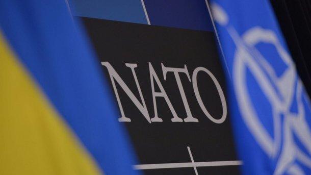 Вступ до НАТО: в Кабміні розкрили плани України