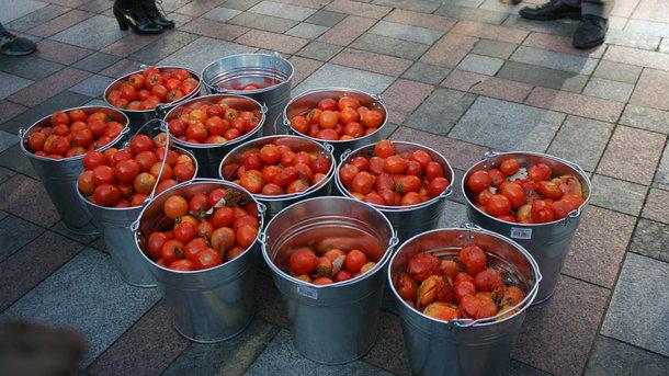Україна втрачає експорт помідорів