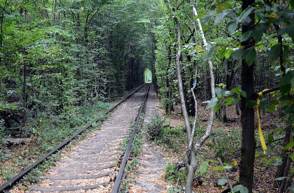 Куди поїхати: незвичайні місця в Україні, фото-4