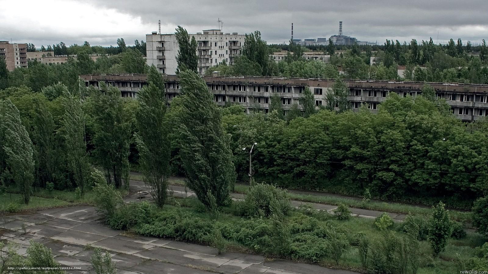 199534_pripyat_-mertvyj_-gorod_-doma_-okna_-derevya__1920x1080_www.gde-fon.com