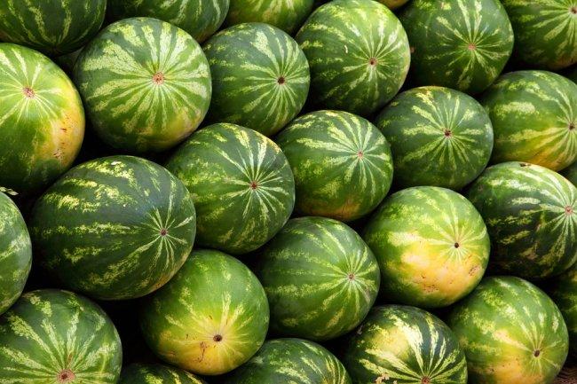 watermelon-2636_960_720