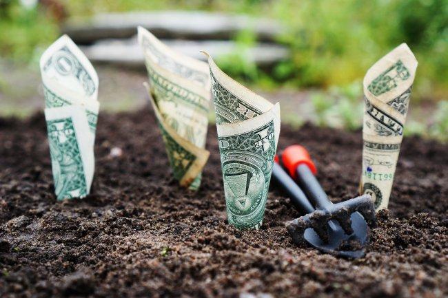 money-1604921