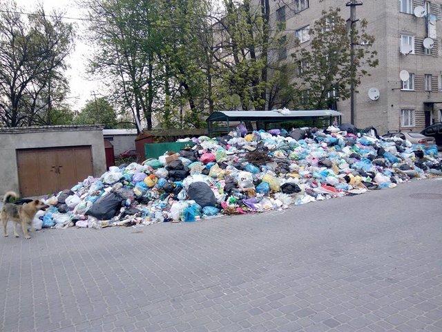УЛьвові невивезли сміття із більш ніж 400 сміттєвих майданчиків