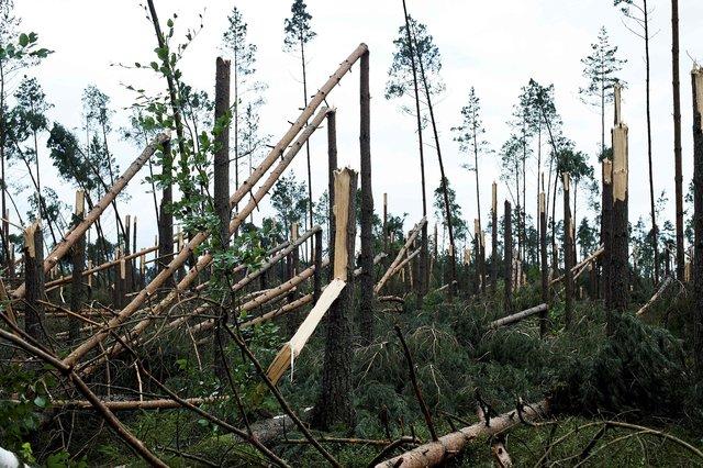 Смертоносний ураган обрушився на Польщу
