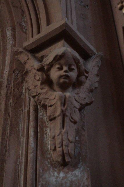 Сум. Ніжний ангел