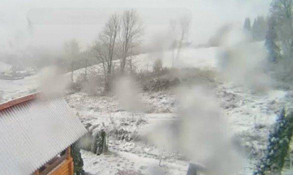 Потужна снігова буря вУкраїні: нове відео захопило мережу